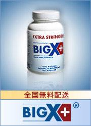 bigxPlus_ban.jpg